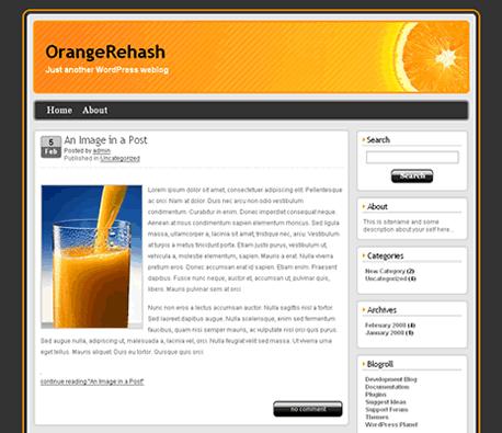 Free WordPress Template - OrangeRehash